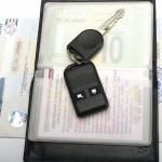 Электронные паспорта могут притормозить поток иностранных автомобилей