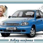 Автоинструктор Эльвира