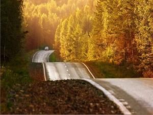 Осторожно – осенняя дорога